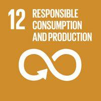 responsibleconsumption12
